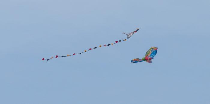 Kites at the Sea, July 2021