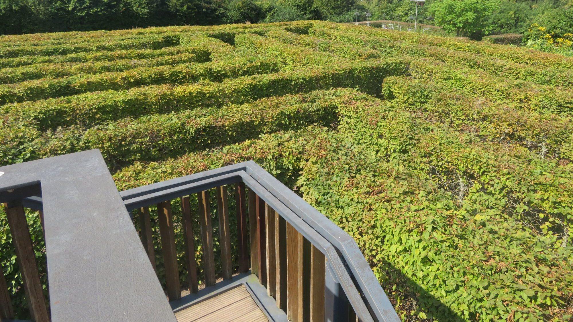 Inside the Maze, Sauerland Park, 2021