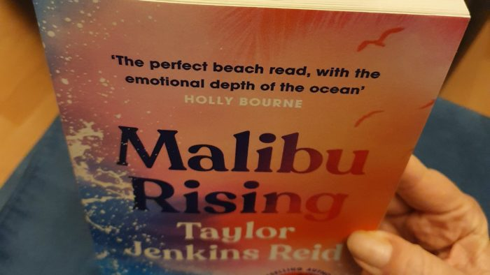 Malibu Rising, novel